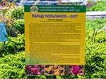 отдых в Крыму: Парад тюльпанов 2017 в Никитском ботаническом саду