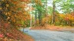 отдых в Крыму: Осенний пейзаж, дорога на Ай-Петри