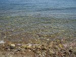отдых в Крыму: Море под Эльчидагом
