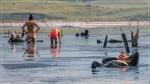 отдых в Крыму: Чокракские грязи