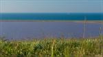 отдых в Крыму: Весеннее разнотравье