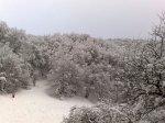 отдых в Крыму: Зима на Ай Петри