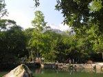 отдых в Крыму: Озеро в Воронцовском парке