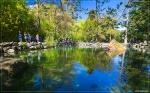 отдых в Крыму: Озера в Воронцовском парке