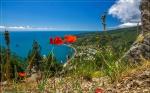 отдых в Крыму: Вид на Голубой залив