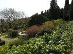 отдых в Крыму: Воронцовский парк весна 2010