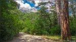 отдых в Крыму: Прогулка по Воронцовскому парку