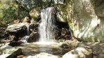 отдых в Крыму: Водопад в Воронцовском парке