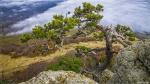 отдых в Крыму: Вид с вершины Демерджи