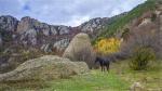 отдых в Крыму: Осень в долине Демерджи