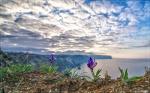 отдых в Крыму: Весенне утро на Фиоленте