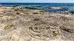 отдых в Крыму: петроглифы в Казачьей бухте