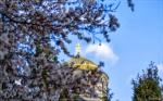 отдых в Крыму: Весенний Херсонес