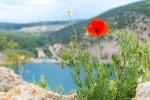 отдых в Крыму: Балаклава весной