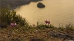 отдых в Крыму: Апрельский рассвет на Фиоленте