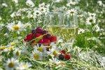 отдых в Крыму: Ромашки, фрукты, вино...