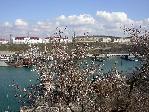 отдых в Крыму: весенний вид на Южную бухту Севастополя