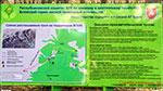 отдых в Крыму: маршруты троп в горах над Ялтой