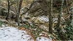 отдых в Крыму: речка Учан-Су зимой