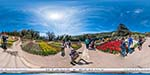 отдых в Крыму: Никитский ботанический сад: Парад тюльпанов